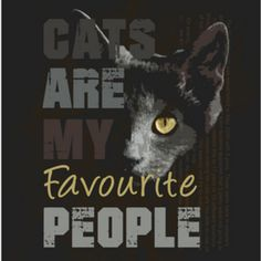 Art added a new photo. Type 3, Facebook, My Favorite Things, Cats, Movie Posters, Movies, Photos, Gatos, Kitty Cats