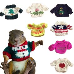 Small Animals Squirrel Sugar Glider Rat Mice Sweater Suit Dress Christmas Gift #Unbranded