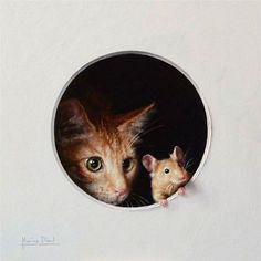 cat and mouse  #animal