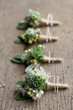 Succulent Buttonholes for the Groom and his Groomsmen? literal meaning being always living and relating to protection.