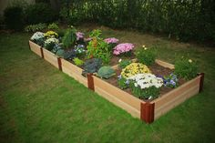 Frame It All Two Inch Series 4ft. x 16ft. x 12in. Cedar Raised Garden Bed Kit