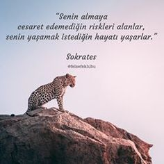 465b Takipçi, 96 Takip Edilen, 2,452 Gönderi - Felsefe Kulübü'in (@felsefeklubu) Instagram fotoğraflarını ve videolarını gör Photo Quotes, Motivation Inspiration, Cool Words, Poet, Philosophy, Texts, Writer, Sadness, Life Quotes
