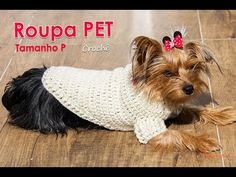 Crochet Dog Clothes, Crochet Dog Sweater, Pet Clothes, Love Pet, I Love Dogs, Pet Sweaters, Dog Wear, Dog Pattern, Animal Fashion
