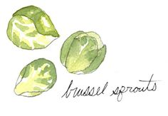 Preheat oven to 425 degrees  Take 1 pound of brussell sprouts  wash and cut away any dry ends or brown bits  place in roasting pan  Pour 2 Tbs olive oil over the sprouts  sprinkle liberally with salt and pepper