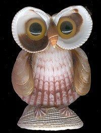 a seashell owl! a seashell owl!manandmollusc… Best Picture For spring crafts For Your Taste You are - Sea Crafts, Nature Crafts, Baby Crafts, Paper Crafts, Seashell Art, Seashell Crafts, Flower Crafts, Shell Animals, Seashell Projects