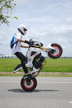 Honda Grom (Monkey Bike)