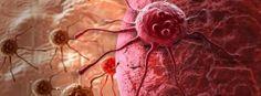 Jak předvídat rakovinu