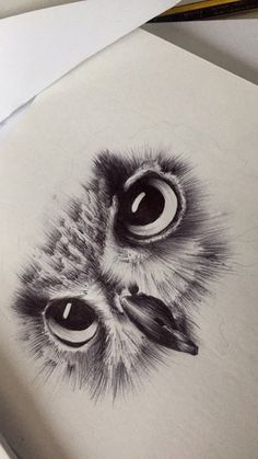 Owl biro sketch You are in the right place about Birds Drawing for kids Here we offer you the most b Owl Eye Tattoo, Tatoo Bird, Owl Tattoo Drawings, Pencil Art Drawings, Art Drawings Sketches, Animal Drawings, Cute Drawings, Tatoo Brothers, Owl Sketch