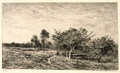 Brooklyn Museum: Charles-François Daubigny, French, 1817-1878 | Apple Trees at Auvers (Pommiers à Auvers) | Etching on heavy laid paper | France | 1877