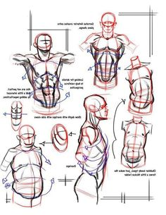 Drawing Tutorials Enjoy a collection of references for Character Design: Male Anatomy. The collection contains illustrations, sketches, model sheets and tutorials. This ga Drawing Skills, Drawing Techniques, Drawing Tutorials, Drawing Tips, Male Drawing, Drawing Art, Drawing Faces, Painting Tutorials, Human Figure Drawing