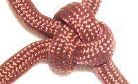 Triangle Knot