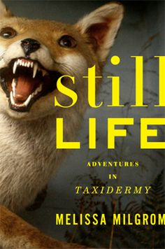 still life: adventures in taxidermy by melissa milgrom.