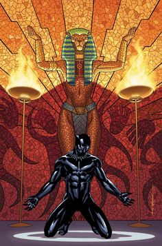 T'Challa BLACK PANTHER by Brian Stelfreeze