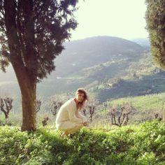 http://instagram.com/theavalist  Spring in Montecatini Alto