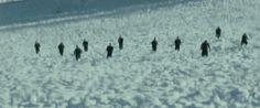 "11 ""The Assassination of Jesse James"" Cinematographer: Roger Deakins Assassination Of Jesse James, Roger Deakins, Cinematography, Filmmaking, Bbc, Composition, Films, Wall, Cinema"