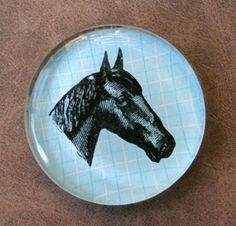 Black Beauty:  Handsome horse head large glass magnet for horse lovers, by CrowBiz on Etsy
