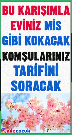 Bu karışımla eviniz mis gibi kokacak! Toilet Cleaning, Blog Tips, Cleaning Hacks, Aromatherapy, Helpful Hints, Diy And Crafts, Health Care, Salt, Food And Drink