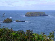 Северный берег Ольстера / Северная Ирландия