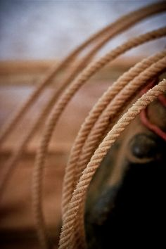 Image result for cowboy rope photography