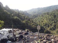 The top of the 100 metre Waitakere Waterfall viewed from below the Waitakere Reservoir Dam. DANGER. Sept 2013.