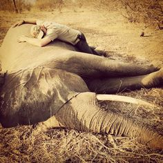 """""""Prince Harry has released this personal photo taken during his summer visit to southern Africa.  Here Prince Harry shares his story behind the…"""""""