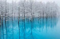 Lieu magique, presque irréel, ce lac bleu situé sur l'île d'Hokkaido a été immortalisé par le photographe, Ken Shiraishi.  Selon le photographe, qui a fait un pèlerinage jusqu'à nord du Japon le mois dernier pour prendre ces clichés, l'eau contient un niveau élevé de d'hydroxyde d'aluminium, ce qui reflète la lumière bleue. Shiraishi a passé plusieurs jours à photographier le lac sous diverses lumières. Le rendu est incroyable avec ces arbres plantés dans une eau verte, turquoise…