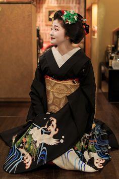 Maiko Satsuki 先笄(祇園甲部・紗月さん) : 花景色-K.W.C. PhotoBlog