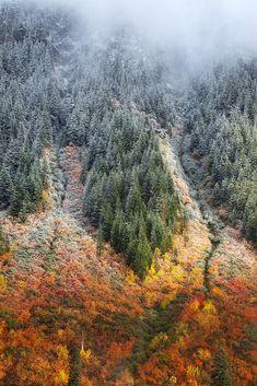Stevens Pass | Washington (by Lisa Blue Hour)