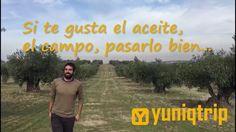 Oleoturismo con yuniqtrip