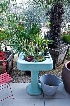 vintage turquoise sink as planter