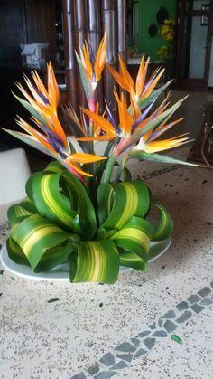 Creative Flower Arrangements, Tropical Floral Arrangements, Church Flower Arrangements, Church Flowers, Beautiful Flower Arrangements, Tropical Flowers, Beautiful Flowers, Wedding Wreaths, Wedding Decorations