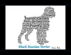 Black Russian TerrierBlack Russian Terrier ArtBlack by PetArtus