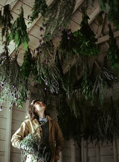 herbs hung in a room, yummy! Someday I want to have a cold room with shelves for canned food, this would also be a cool addition