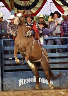Google Image Result for http://horsebackmagazine.com/hb/wp-content/uploads/2012/03/Rodeo-Reno-Bronc-Leigh-frontal-4-72.jpg