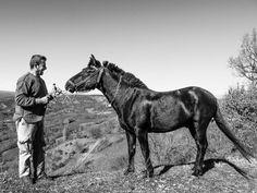 Photo shot at Sitaras village, Grevena, Greece More Photos, Greece, Best Friends, Shots, Creatures, Photoshoot, Horses, City, Places