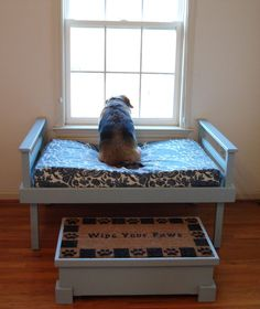 41 Creative DIY Projects for Your Pets - Cats and Dogs