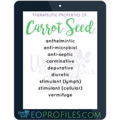 #carrotseed #essentialoil EOprofiles.com