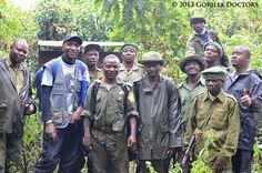Dr. Eddy with Kahuzi Biega National Park rangers | Gorilla Doctors - Gorilla Doctors Blog - Young Grauer's Gorilla Freed from Snare in Kahuzi Biega NationalPark