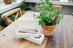Herbal Plant Stakes