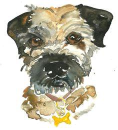 Buster the Border Terrier in Watercolour. Artist - Jo Scott. scottandrobson.com