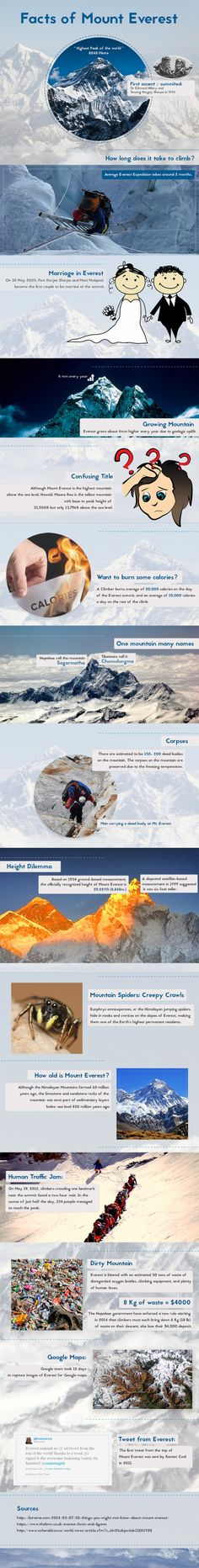 Facts About Mount Everest - Do you fancy an infographic? There are a lot of them online, but if you want your own please visit http://www.linfografico.com/prezzi/ Online girano molte infografiche, se ne vuoi realizzare una tutta tua visita http://www.linfografico.com/prezzi/
