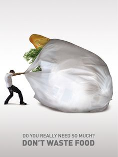 essay on dont waste food Search essay examples browse by category  global food waste essay examples 1 total result the frightening truth about global food waste 1,530 words 3 pages.