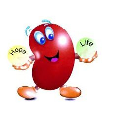 Kidneys do many essential tasks to keep us healthy. The main job of your kidneys is to remove toxins and excess water from your blood. Kidneys also help to control your blood pressure, to produce red blood cells and to keep your bones healthy.