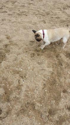Lekker in het zand spelen