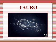 Tauro by Manuel Santiago