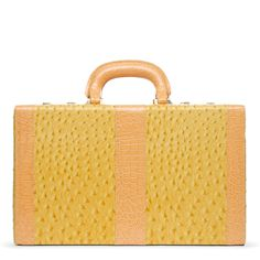 Not a roller bag but a vanity case.   Very chic...