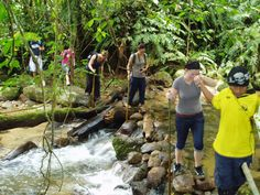Trade in your heels for comfy shoes and take a walk to remember amidst the well-trodden path of Pasir Panjang and Teluk Dalam by partaking in our Jungle Trekking!