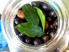 Black olives (Kalamon) preparation. How to make olives in brine - YouTube