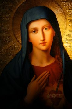 Oh Immaculate Virgin Mary, Mother of our Lord Jesus Christ and our Mother Pictures Of Jesus Christ, Religious Pictures, Religious Icons, Religious Art, Jesus Mother, Blessed Mother Mary, Blessed Virgin Mary, Hail Holy Queen, Jesus E Maria