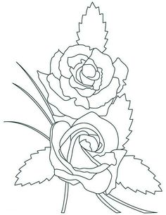 lily coloring pages  View Full Size Image PDFVersion